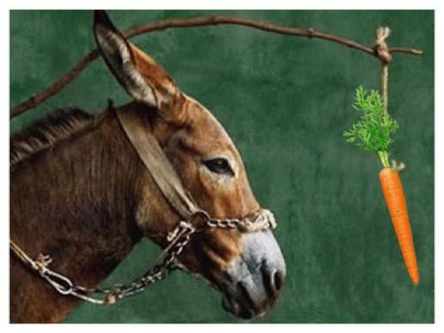 burro-zanahoria.jpg